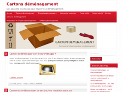 carton-demenagement.be